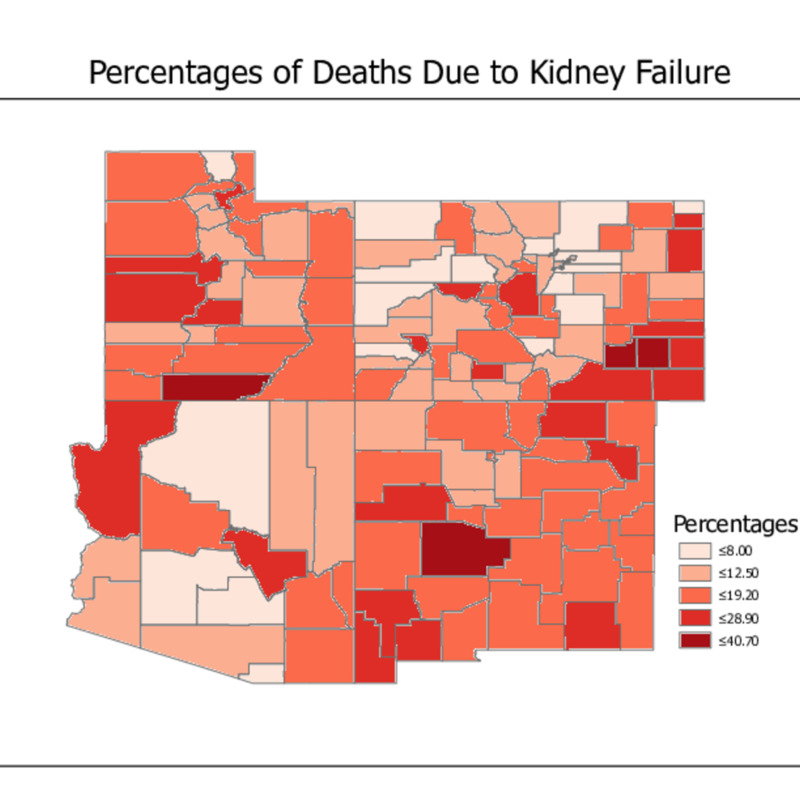 Kidney Failure.pdf