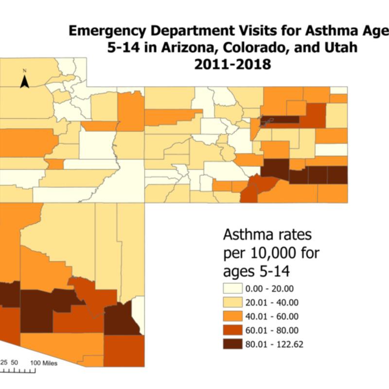 Asthma Rates Layout.pdf