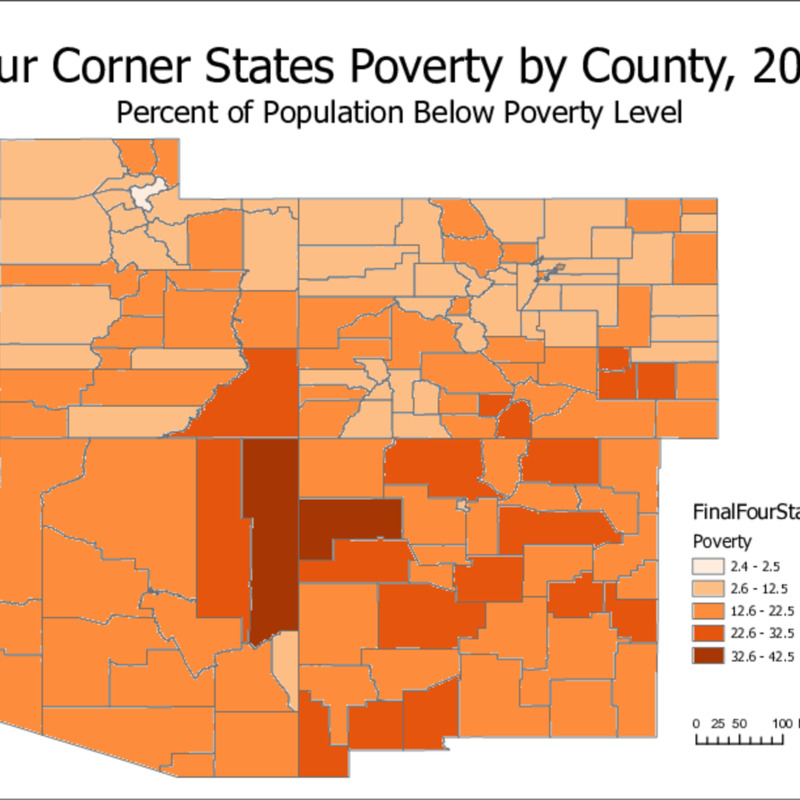 New Poverty.pdf