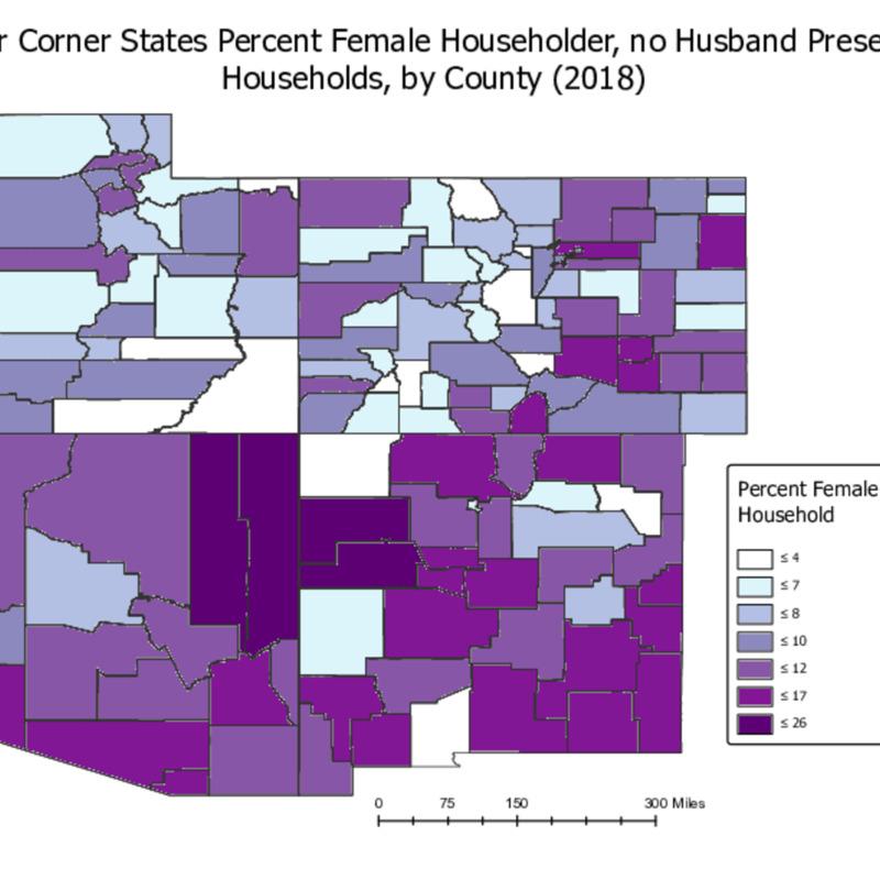 (3)  Female Householder Map.pdf
