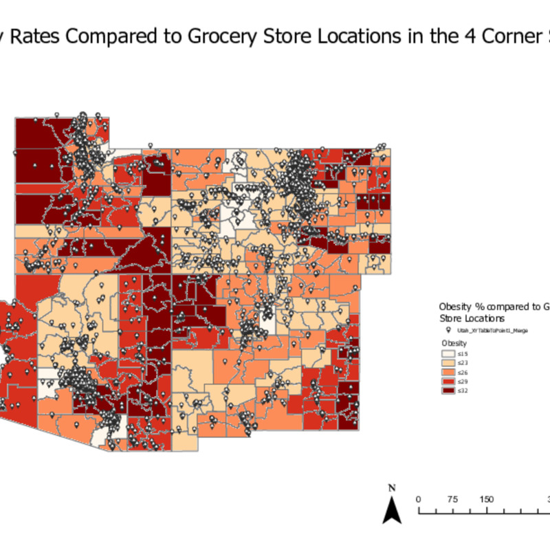 Obesity Rates compared to Grocery Store Locations.pdf